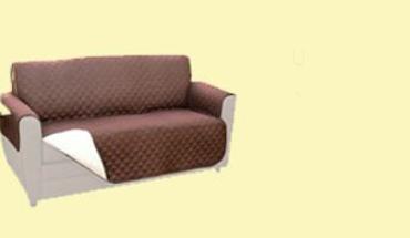 couch banner[6091].jpg